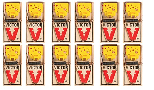 Victor EZ set mouse trap (Pack of 12) ()