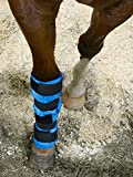 Rural365 Cooling Gel Ice Boot for Horses – Blue