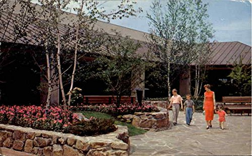 One Of The Beautiful Malls In Old Orchard Shopping Center Skokie, Illinois Original Vintage - Mall Orchard Shopping