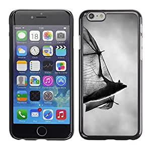 Plastic Shell Protective Case Cover    Apple iPhone 6    Halloween Black White Dracula @XPTECH