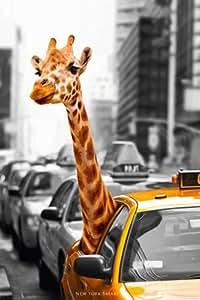 Empire 405050 - Póster (91,5 x 61 cm), diseño de jirafa en taxi de Nueva York