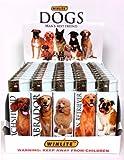 WINLITE DOG LIGHTERS - 10 ASSORTED BREEDS (50 COUNT DISPLAY)