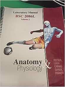 anatomy and physiology laboratory manual volume 2