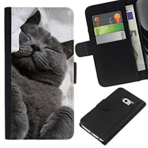 Stuss Case / Funda Carcasa PU de Cuero - Russian Blue Korat Cat Black Feline - Samsung Galaxy S6 EDGE
