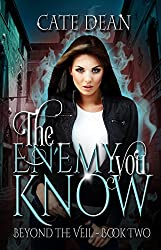 The Enemy You Know (Beyond The Veil Book 2)