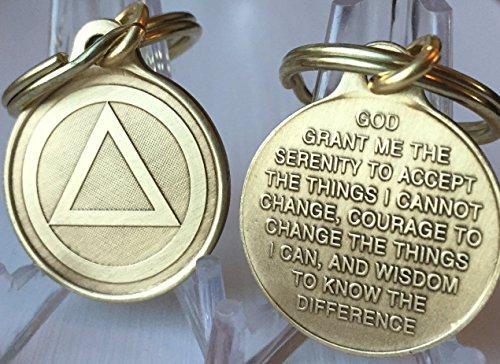 Circle Triangle AA Key Chain 1 Bronze Alcoholics Anonymous Key Tag Charm