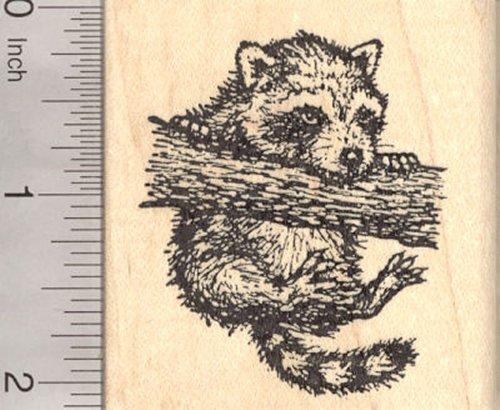 Dangling Raccoon Rubber Stamp, Climbing Tree
