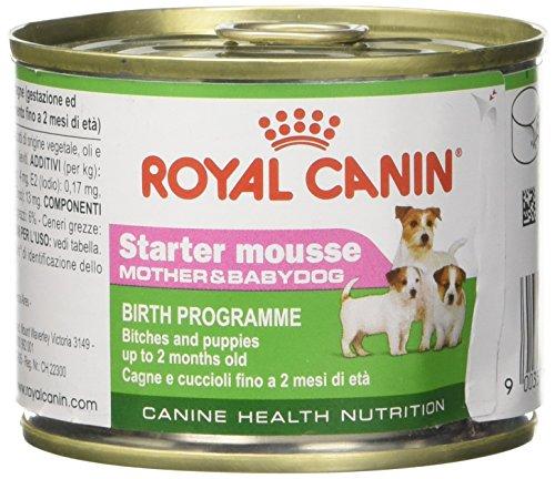 Royal Canin Dog Puppy food Starter Mousse 195 GR