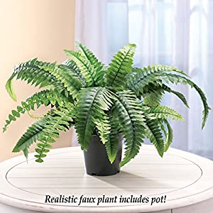 "Faux Fern Artificial Potted Plant with Plastic Base, Tabletop 13""H 2"
