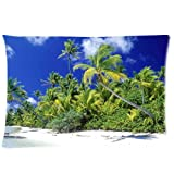 Coming Pillow Cool Pillowcase Palm Beach Solomon Islands Style Pillow Case (Twin Sides)(20x30 Inch)