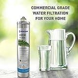 Everpure H-104 Water Filter Replacement Cartridge