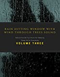 Rain Hitting Window with Wind Through Trees Sound - Nature Sounds Two Hours for Sleeping, Sleep Aid for Everybody - Volume Three
