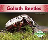 Goliath Beetles (Super Species)
