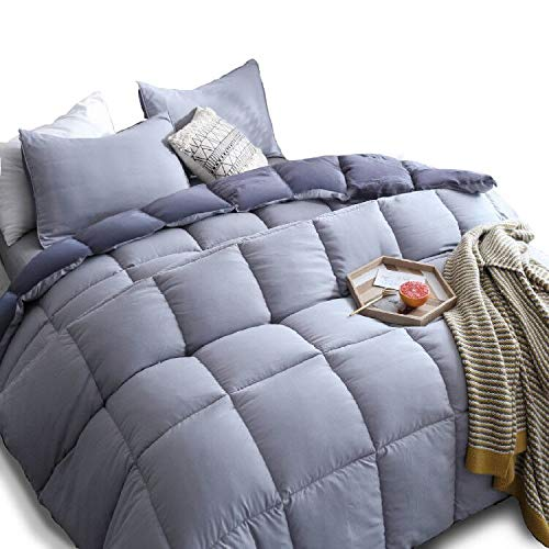 (KASENTEX All All Season Down Down Alternative Quilted Comforter Set with Sham(s) - Reversible Ultra Soft Duvet Insert Hypoallergenic Machine Washable, Queen, Quartz Silver/Pebble Grey )