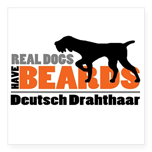 German Wirehair Pointer (CafePress - Real Dogs Have Beards - DD Square Sticker 3