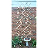 Bosmere Expanding Bamboo Trellis for Vining Plants, 6' x 4'