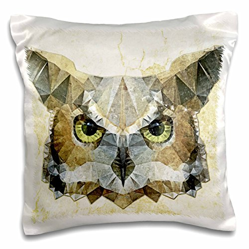 - 3dRose pc_201604_1 Abstract Owl Funky Owl Pillow Case, 16