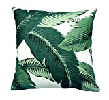 AMArtStore Pillowcases Home Office Decoration, Beautiful Banana Leaves 16 x 16 Inches
