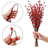 HOLICOLOR 10Pcs Red Berry Stems Artificial
