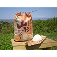 山形県産 特別栽培米はえぬき(玄米)