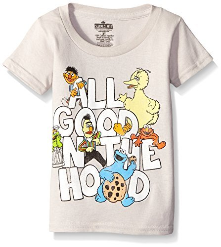 Sesame Street Little Boys' Toddler Short Sleeve T-Shirt, Silver, 5T