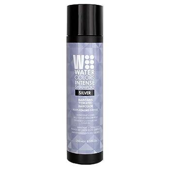 Amazon Com Watercolors Intense Color Shampoo 8 5 Oz Silver Beauty
