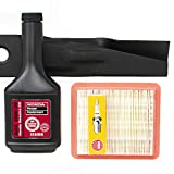 Honda HRR216 Series Tune-Up Kit (Serial Range MZCG-8000001 to MZCG-8669999)