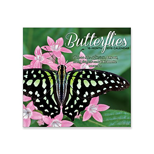 - MTT Religious 16 Month Premium Wall Calendar 2019: Butterflies. Each Month Displays Full-Color Photograph. Printed on Linen Embossed Heavyweight Paper Stock. Includes KJV Scripture