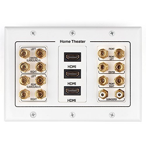 TNP Home Theater Speaker Wall Plate Outlet - Speaker Sound Audio Distribution Panel Gold Plated Copper Banana Plug Binding Post Connector Insert Jack Coupler