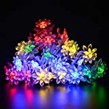 M.best Waterproof 4.8M/16FT 20 Leds Blossom Double Lotus Fairy Solar String Lights flower lighting for Garden Home Christmas Party Wedding decoration ( Multi-color)