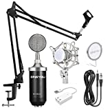 ZINGYOU BM-8000 Professional XLR Large-diaphragm Studio Condenser Microphone Set for Recording (Black)