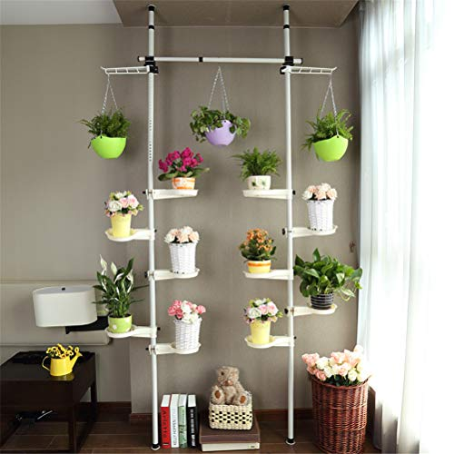Standing Plant Stand Pole Spring Tension Rod Corner Indoor Flower Display Rack Holder with Trays Adjustable Telescopic Floor To Ceiling Detachable 2 Poles 1 Bars,10Trays ()