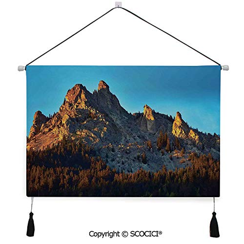 (SCOCICI Durable Material Multipurpose W24xL17inch Wall Hanging Tapestry Mountain with Pine Trees Forest in Summertime Sunlights on Rocks Illustration Decorative Painting Living Room Painting Fabric B)