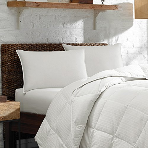 """Price comparison product image Eddie Bauer Luxury 700 Fill Power White Goose Down Plush Top Pillow - Hypoallergenic Down Pillow - Medium/Firm Density - Deluxe Chamber Pillow With 10/90 Down and Feather Inside 700 FP Down - 400 TC Pima Cotton - Made In The USA (Jumbo 20"""" x 28"""")"""