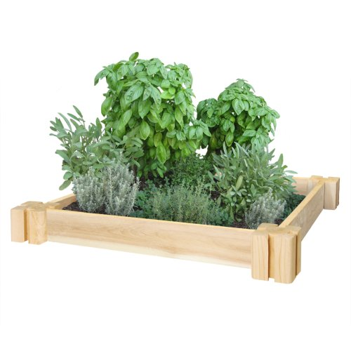 Greenes Fence RC2GH2 Cedar Herb Garden, 2'. x 2'. x 3.5 in, Natural by Greenes Fence