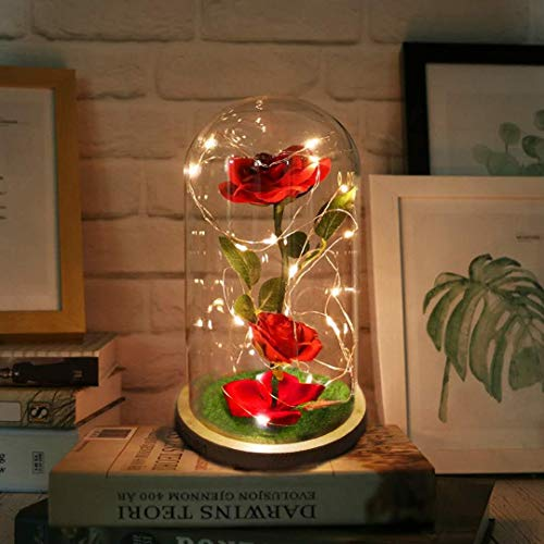 Artificial & Dried Flowers Brilliant Beauty And The Beast Red Rose In A Glass Dome On A Wooden Base Rose Lamp For Valentines Gifts 2 Rose Good Taste