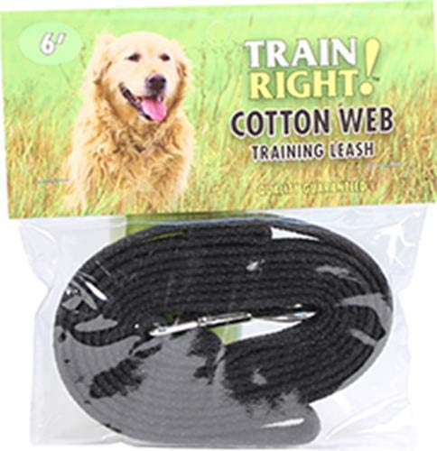 Coastal Pet Products DCP906HBLK Cotton Web Collar Lead for Dogs, 5/8 by 6-Feet, Black (Cotton Training Leash)