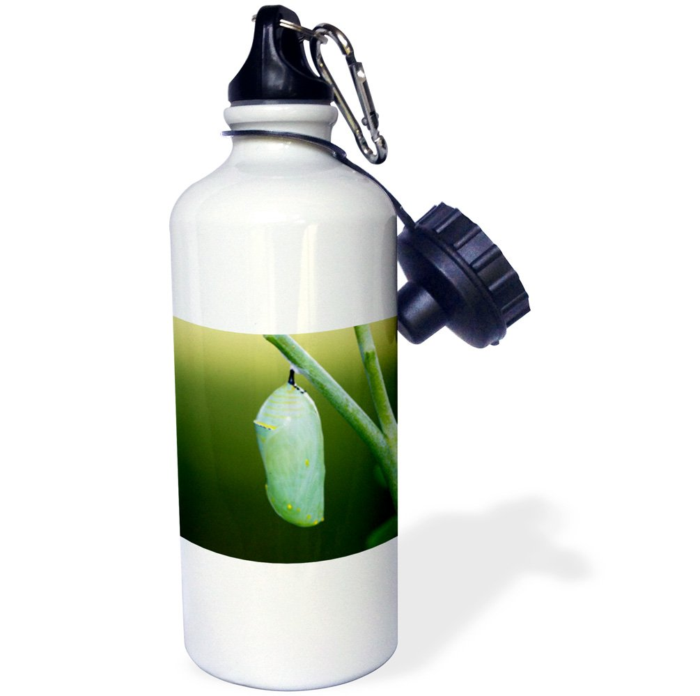 Havasupai reservation Havasu Falls in the Grand Canyon Sports Water Bottle 21 oz Multicolor 3dRose wb/_209092/_1USA Arizona