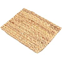 Rosewood 19479 Chill N Chew Mat Toy