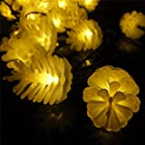 Sunniemart Pine Cone 20 LED Solar Powered Outdoor Decorative Lights for Christmas, Wedding , Party (Warm White)