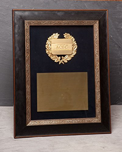 d0bb2a1b8d54 Image Unavailable. Image not available for. Color  Black Wood Frame with Gold  Trim and Glass