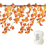 GIAGY Fall Decor,Fall Garland,Thanksgiving Decor,Christmas Decor Lighted Fall Wreath Halloween String Lights [14.7 Feet &40 Lights]