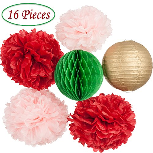 Party Decoration Set - Gorgeous 16pcs Assorted Paper Party Décor, Pack of Tissue Pom Pom Flowers, Honeycombs, Lanterns, Garland for Birthday, Baby Shower, Mexican Fiesta or Wedding by Mdxconcepts