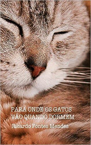 Para Onde Os Gatos Vão Quando Dormem (Portuguese Edition): Ricardo Fontes Mendes: 9781478195191: Amazon.com: Books