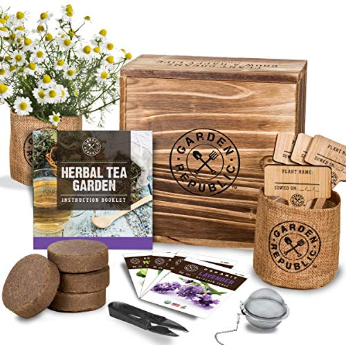 Indoor Herb Garden Seed Starter Kit – Organic Herbal Tea Growing Kits, Grow Medicinal Herbs Indoors, Lavender Chamomile Lemon Balm Mint Seeds, Soil, Plant Markers, Planting Pots, Infuser, Planter Box