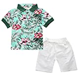 Infant and Toddler Baby Boys Kids Hawaiian Shirt and Ripped Shorts Clothing Set (2-3Years, G&W)