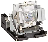 Optoma BL-FS300C Replacement Lamp - 300 W Projector Lamp - P-VIP - 3000 Hour Standard, 2000 Hour High Brightness Mode - BL-FS300C