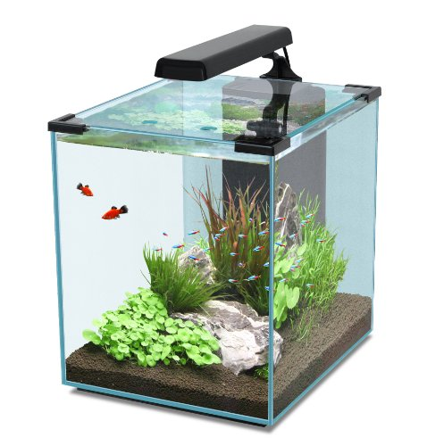 Nano Cubic 40 schwarz Aquarienset, Nano Cube mit LED Beleuchtung, Filter, Pumpe & Heizer