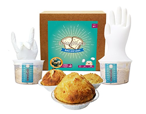 Magical Microbes DoughLab STEM Kit: Bake and Learn