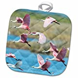 3D Rose USA - Florida - Merritt Island - NWR - Roseate Spoonbills Pot Holder, 8 x 8